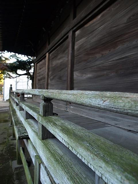 上野公園 ~ 護国寺 (11/21)_b0006870_2020342.jpg