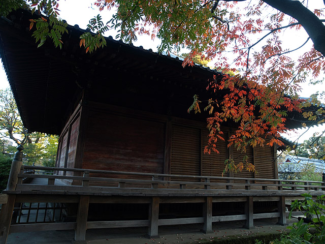上野公園 ~ 護国寺 (11/21)_b0006870_20203760.jpg