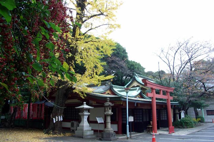 摂社 日枝神社 (11/16) 日枝神社 (11/19)_b0006870_22345548.jpg