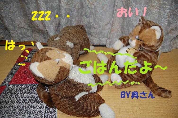 b0059978_2234674.jpg