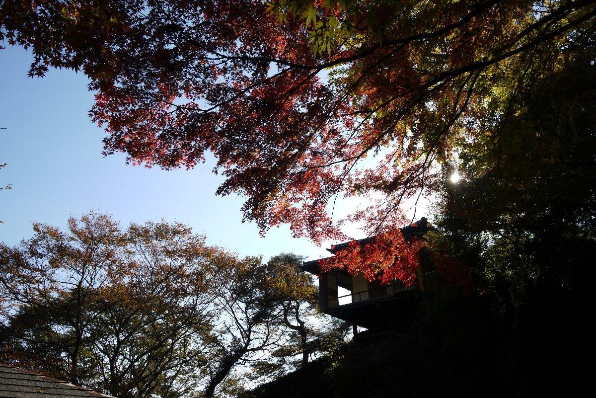 件の山寺へ_c0124795_22325842.jpg