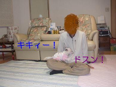 f0179203_19504275.jpg