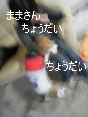 c0205806_19442036.jpg