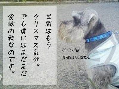 f0008935_4462189.jpg