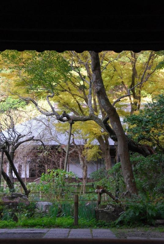鎌倉他(秋)_c0187781_11153265.jpg