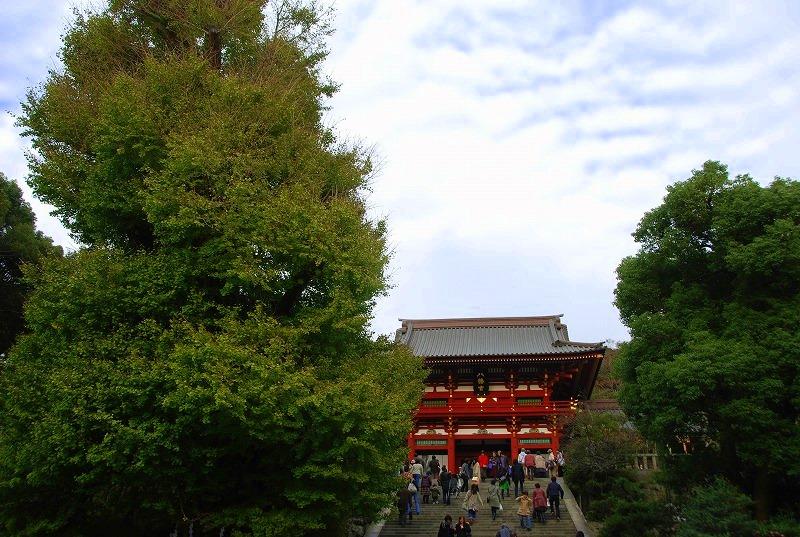 鎌倉他(秋)_c0187781_918329.jpg