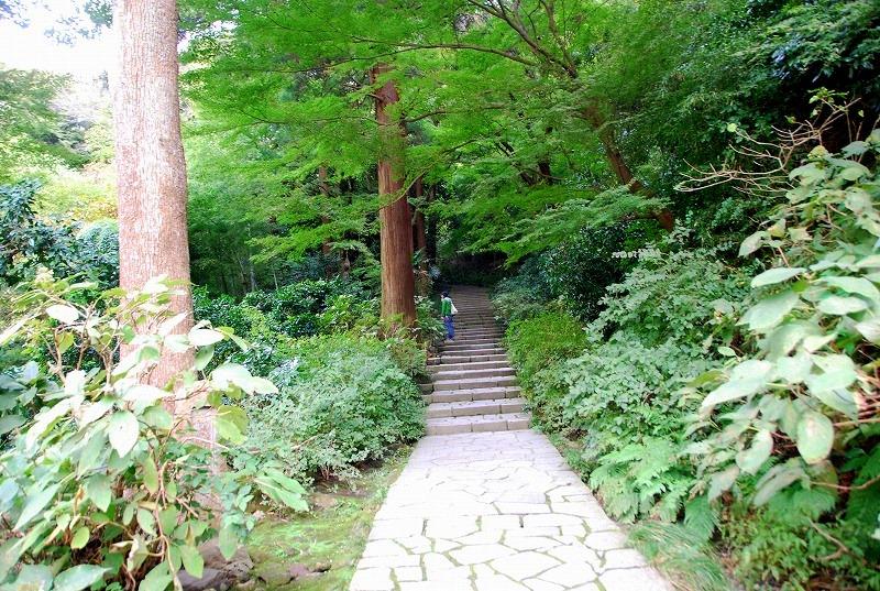鎌倉他(秋)_c0187781_940442.jpg