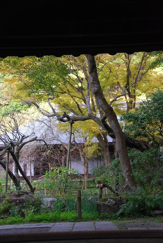 鎌倉他(秋)_c0187781_9414512.jpg