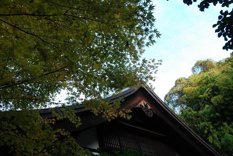 鎌倉他(秋)_c0187781_9434616.jpg