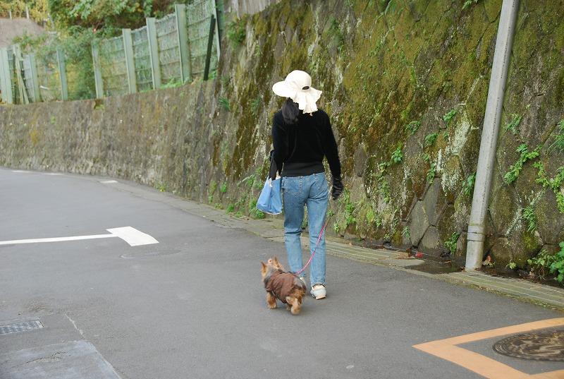 鎌倉他(秋)_c0187781_9454156.jpg