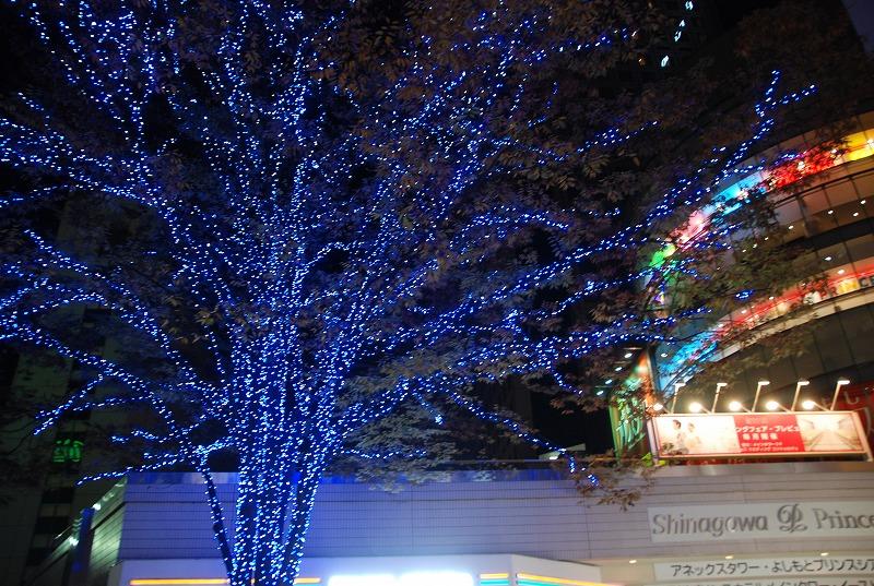 鎌倉他(秋)_c0187781_9471262.jpg