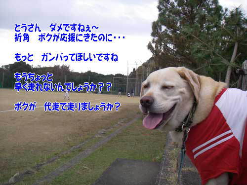 b0145486_1548528.jpg