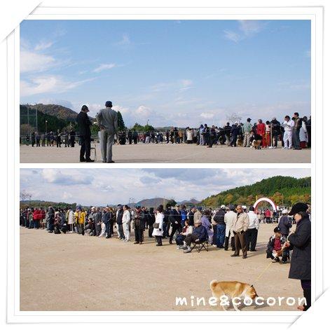 日本犬保存会全国展(京都)_a0053987_22241982.jpg