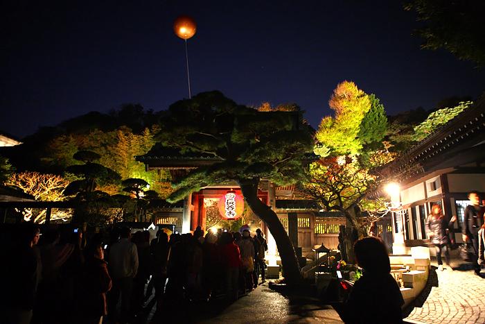 湘南の紅葉 -長谷寺ライトアップ-_e0139093_1921479.jpg