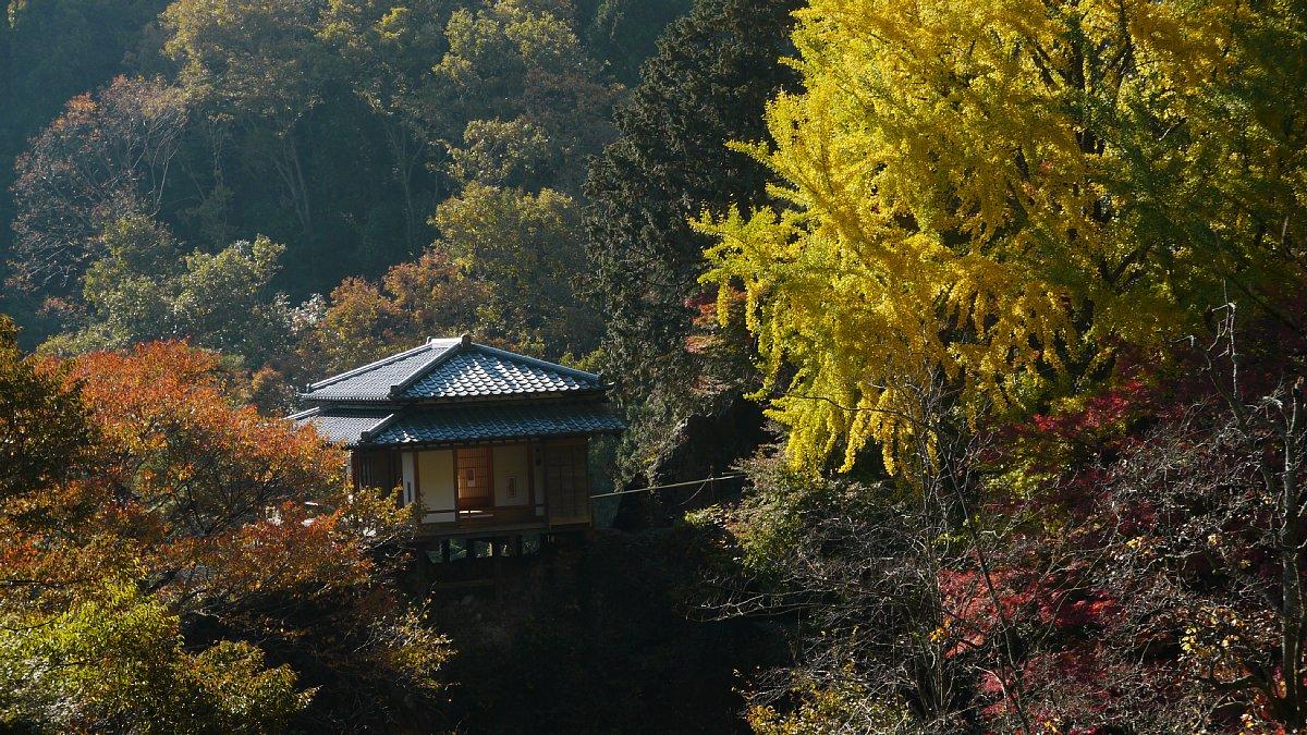 「足利行道山くもかけ橋」_c0124795_214241100.jpg