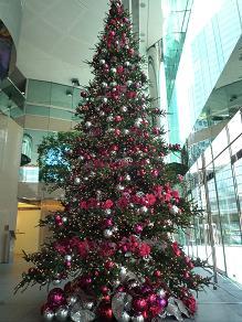 今年のクリスマスのデコレーション_d0088196_144559.jpg