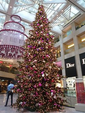 今年のクリスマスのデコレーション_d0088196_164494.jpg