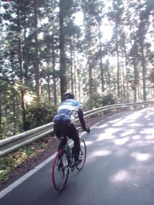 奥久慈パノラマラインサイクリング_d0127209_22345010.jpg