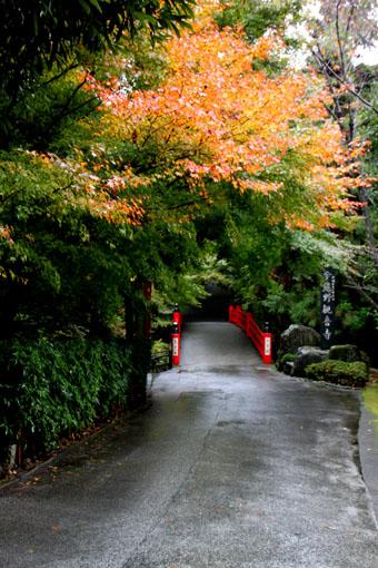 今熊野 観音寺_e0048413_22152356.jpg