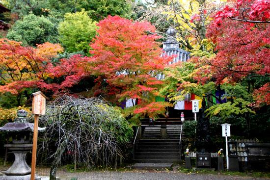 今熊野 観音寺_e0048413_22154898.jpg