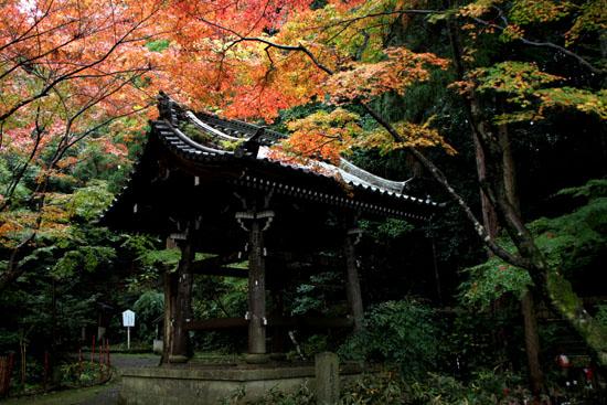 今熊野 観音寺_e0048413_22162014.jpg