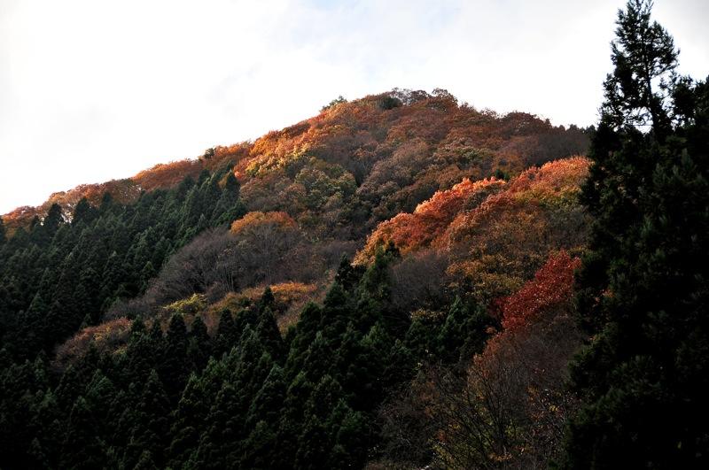 秩父遠征日記VOL1:11月21日の風景_b0065730_10461138.jpg