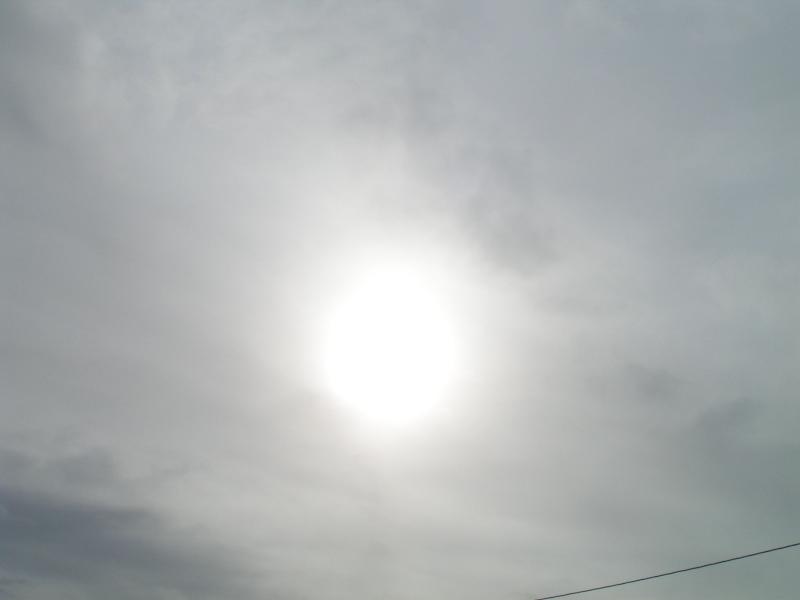 曇りのち晴れ間?_e0183255_9471445.jpg