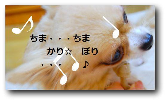 b0112758_18491223.jpg