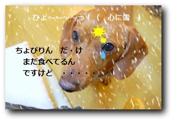 b0112758_18574089.jpg