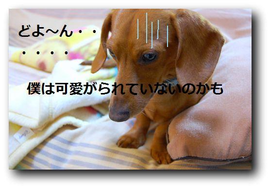 b0112758_1927133.jpg
