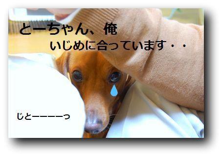 b0112758_2001126.jpg