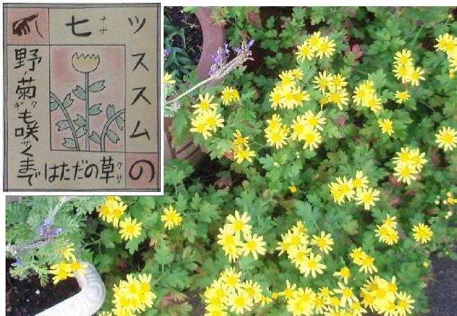 f0101679_19445921.jpg