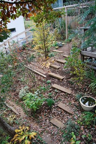見通しの良い庭に…_c0124100_2039710.jpg