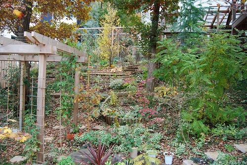 見通しの良い庭に…_c0124100_20401912.jpg