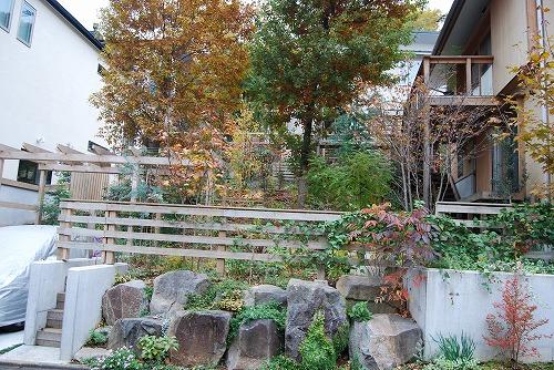 見通しの良い庭に…_c0124100_20402874.jpg
