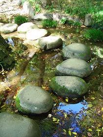 内庭・寝覚の滝 (小石川後楽園 ⑧ 江戸の庭園)_c0187004_20542845.jpg