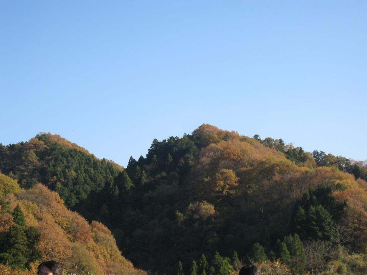 【散撮】紅葉も_f0141609_1216266.jpg