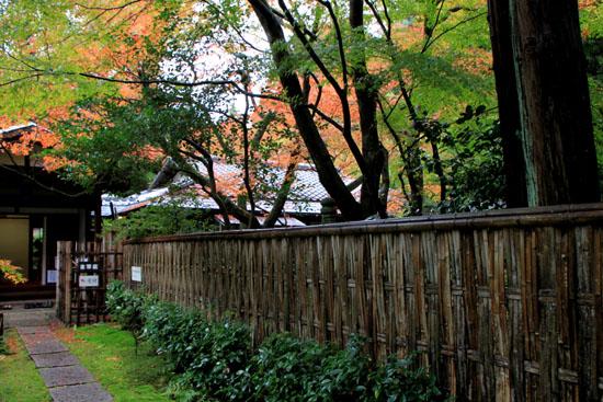 今熊野 来迎院_e0048413_19553180.jpg