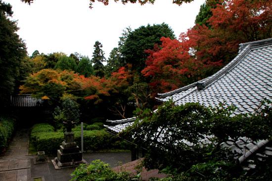 今熊野 来迎院_e0048413_19555117.jpg