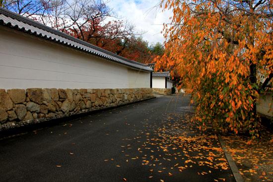 紅葉の盛り 勧修寺(かじゅうじ)_e0048413_2140467.jpg