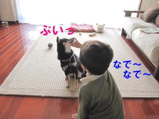 c0185516_15443991.jpg