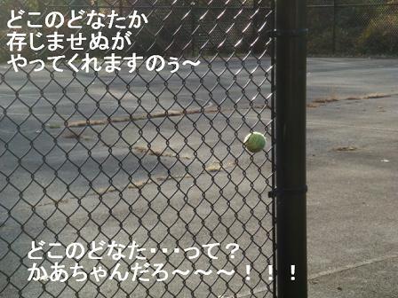 ボクが綴る ボールのはなし_e0147716_35239100.jpg
