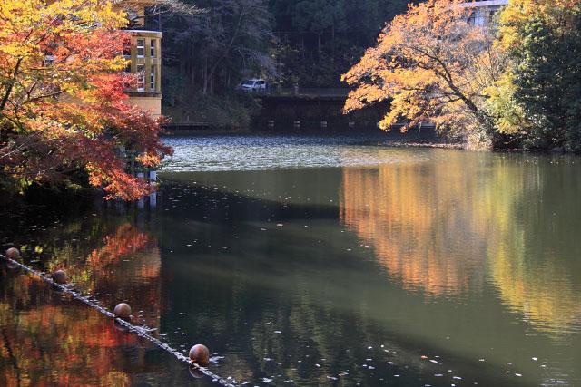 鎌北湖の紅葉_d0026817_0592570.jpg