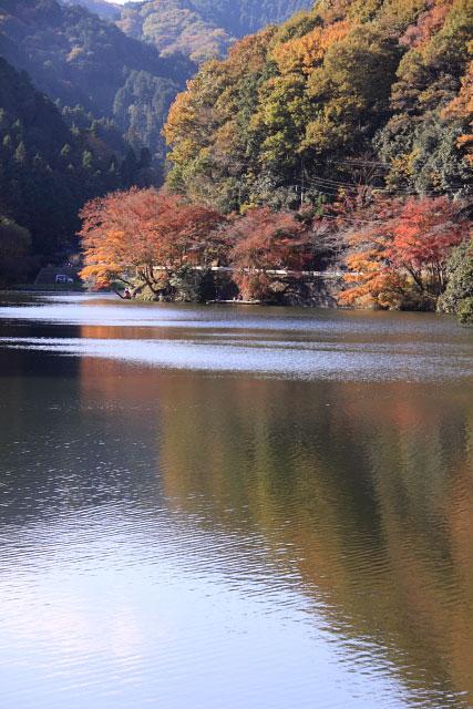 鎌北湖の紅葉_d0026817_102859.jpg