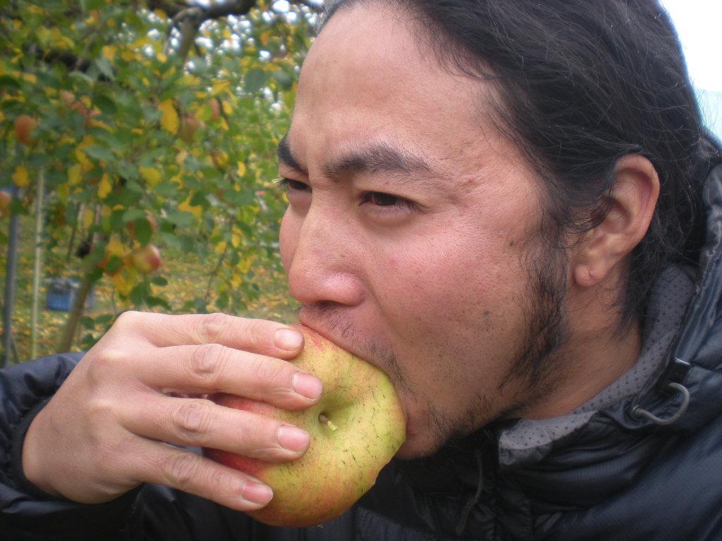 りんごヘブンへ~~また_a0125419_1049516.jpg