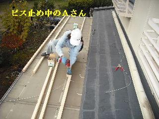 30年前のサンルーム屋根の修理_f0031037_2010695.jpg