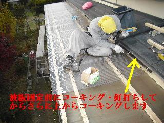 30年前のサンルーム屋根の修理_f0031037_20111645.jpg