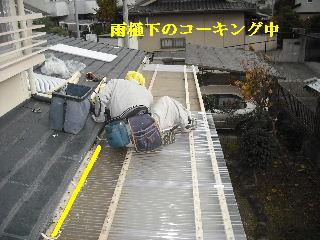 30年前のサンルーム屋根の修理_f0031037_2011234.jpg