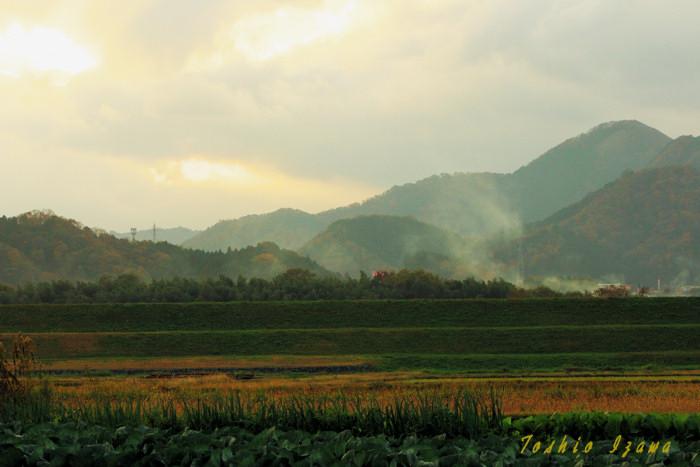 田園の秋模様(福知山)_c0181958_2455290.jpg