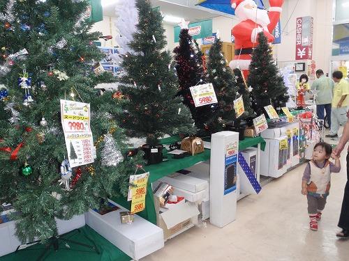 クリスマスの準備_c0180460_1415432.jpg